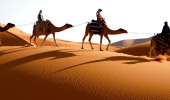 Passeio a Camelo