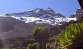 Monte Quenia