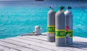 Mergulhos em Bonaire