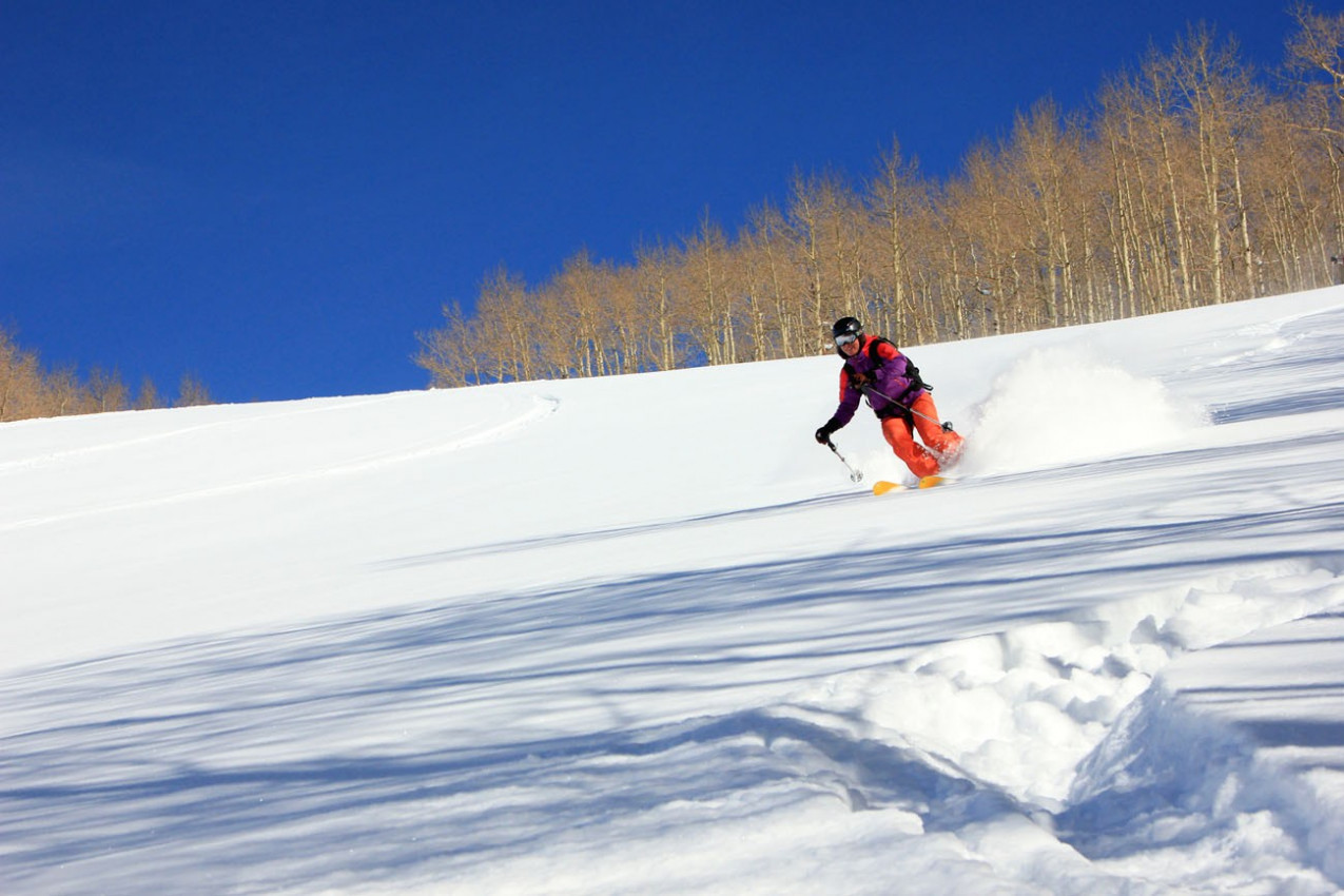 Skiing powder with aspens in the background, Aspen