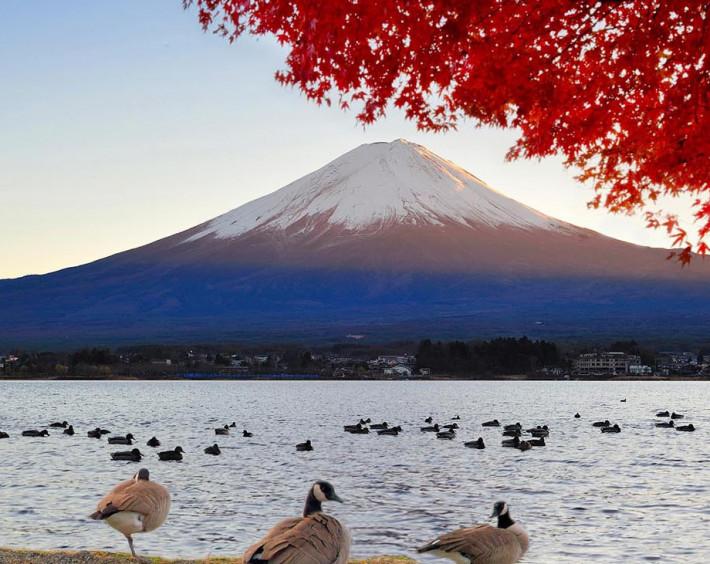 as Maravilhas do Japão