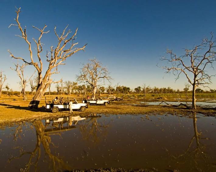 Botswana, Delta do Okavango e Reserva Moremi
