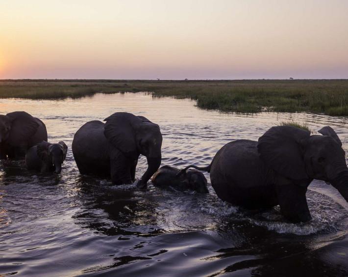 Botswana By Widerness Safaris