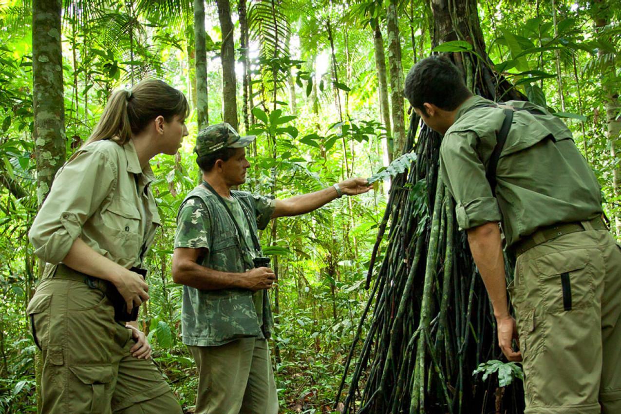 Pacote e Roteiro para o Cristalino Lodge Amazonas